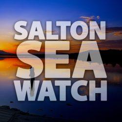 Salton Sea Watch